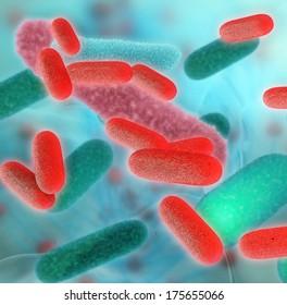 Bacteria - 3d rendered illustration