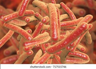 Bacteria Mycobacterium tuberculosis, the causative agent of tuberculosis, 3D illustration
