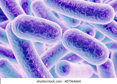 Bacterial infection. Rod-shaped bacteria, 3D illustration