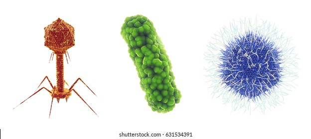 Bacteriophage , bacterium and Mimivirus , Set of microscopic germs that cause infectious diseases , isolated on white , 3d illustration