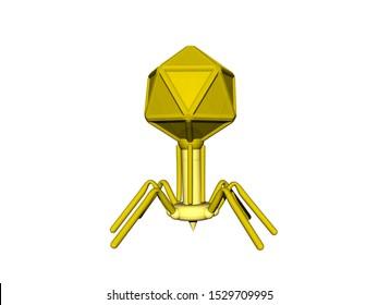 Bacteriophage as a virus against bacteria 3D rendering