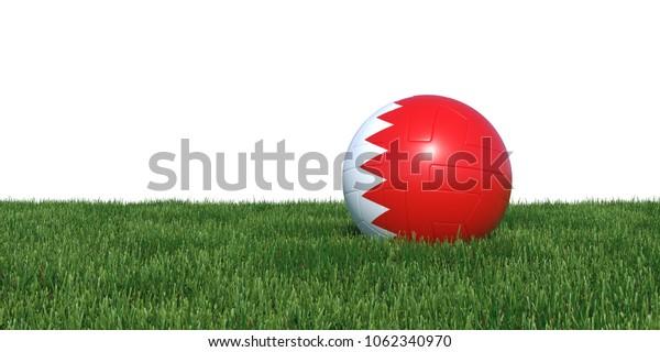 Bahrain Bahrainis flag soccer ball lying in grass, isolated on white background. 3D Rendering, Illustration.