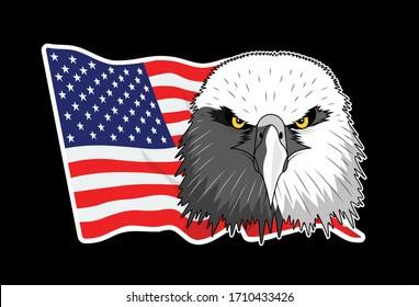 Bald eagle symbol of north america