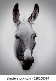 Ballpoint pen drawing of donkey.