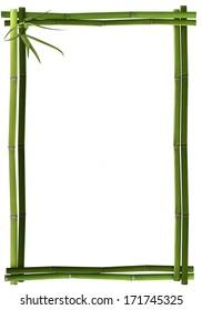 Bamboo frame portrait green
