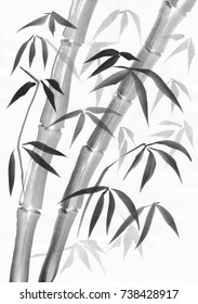Bamboo watercolor painting study with two stalks and dark and light leaves. Black gouache on white paper.
