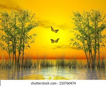Bamboos and grass upon water by sunset with two butterflies flying - 3D render