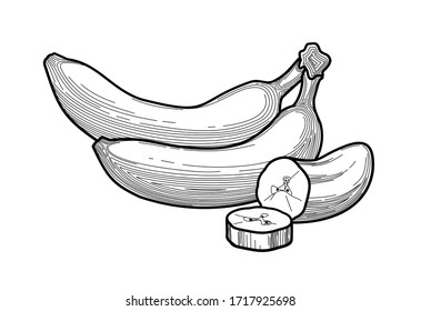 banana - black and white illustration of thin lines. bananas - a stylized drawing of fruit in a flat style. healthy eating. concept - packaging design, food design. vitamins