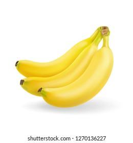 Banana fruit realistic. Bunch of bananas isolated