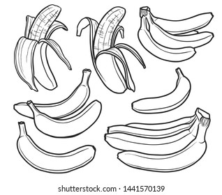 Banana hand drawn black outline isolated illustrations set. Exotic peeled banana fruit bunches line art sketch design elements collection. Hawaiian, tropical contour drawing fruits pack
