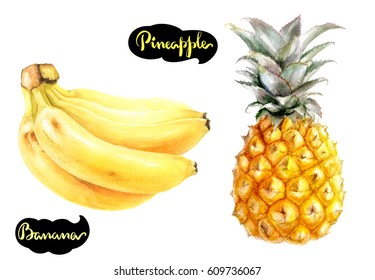 Banana, pineapple watercolor hand draw illustration  isolated on white background.