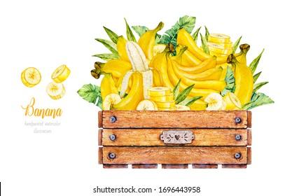 Banana. Banana slice. Wooden box with bananas. Watercolor botanical illustration. Watercolor fruit
