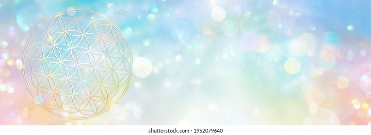 Banner flower of life in an abundant field of sparkling rainbow colored light