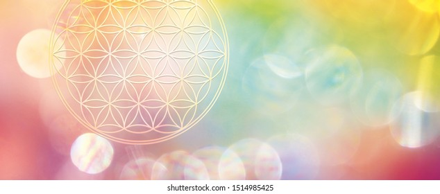 Banner flower of life in powerful creative energy