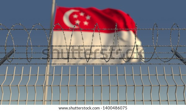 Barbed wire against waving flag of Singapore. 3D rendering