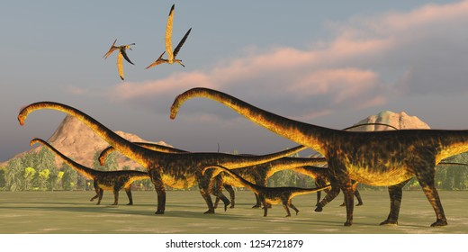 Barosaurus Dinosaur Herd 3D illustration - A Barosaurus dinosaur herd watches over it's youngsters as two Pteranodon reptiles fly over.