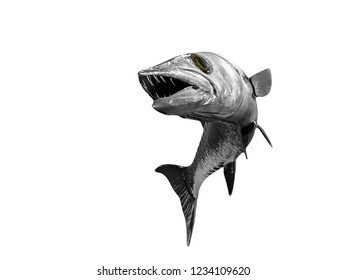 Barracude fish isolated curved tail in air 3d render