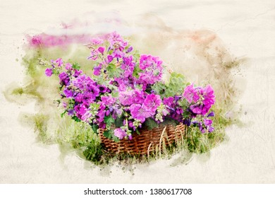 basket with purple wild mallow in watercolors