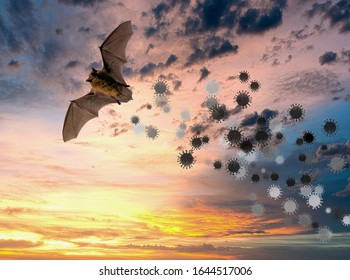 Bat flying with simulated coronavirus