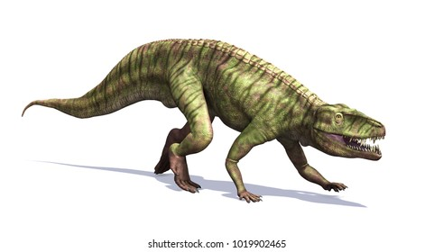 The Batrachotomus was a dinosaur that lived during the Triassic period - 3d render.