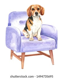 Beagle of a dog. Watercolor hand drawn illustration. Watercolor Beagle sitting on sofa chair layer path, clipping path isolated on white background.