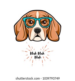 Beagle in glasses geek isolated head.  file isolated on white background.