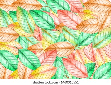 The beatiful Leaves Background Wallpaper