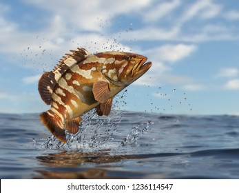Beatiful marin sea grouper with great pose out of water 3d render