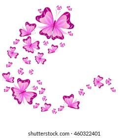 beautidful butterflies