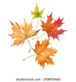 Beautiful autumn set with watercolor hand drawn colorful maple leaves. Stock illustration.
