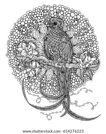 Beautiful Bird Coloring Page Resplendent Quetzal Illustration