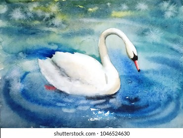 beautiful bird white Swan gracefully floating on the lake water watercolor illustration