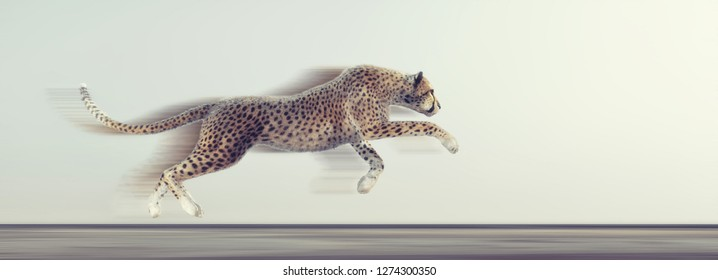 A beautiful cheetah running on white background. This is a 3d render illustration