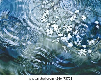 A beautiful close up of ripples on a pond with flower petals and reflection of branches