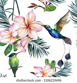 Beautiful colorful colibri and pink plumeria flowers on white background. Exotic tropical seamless pattern. Watecolor painting. Hand painted illustration. Wallpaper, fabric design.