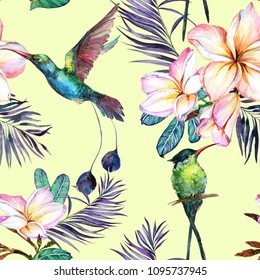 Beautiful colorful colibri and plumeria flowers on light green background. Exotic tropical seamless pattern. Watecolor painting. Hand painted illustration. Wallpaper, fabric design.