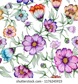 Beautiful colorful cosmos flowers with leaves on white background. Seamless floral pattern.  Watercolor painting. Hand painted botanical illustration. Wallpaper, textile design.