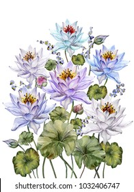 Beautiful colorful lotus flowers with leaves and bellflowers on white background. Floral illustration. Isolated. Watercolor painting. Hand drawn and painted.