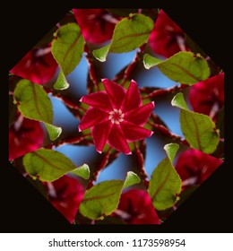 Beautiful, colorful, red, green, bright blue mandala with geometric floral pattern on dark background. Decorative element, ethnic design, web design, anti-stress therapy, meditation, holiday.