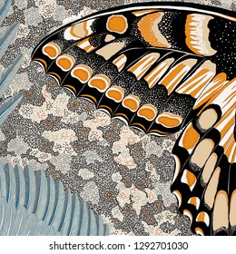 Beautiful Colorful wing Butterfly background