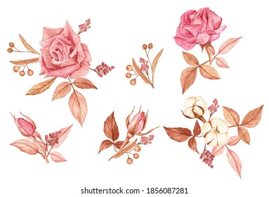 Beautiful compositions of roses, leaves, cotton, pepper and linden on a white isolated background. Watercolor hand-drawn elements. Nice design for clip art, stickers, cards, giftware and merchandise.