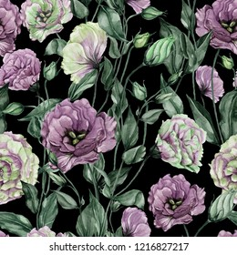 Beautiful eustoma flowers (lisianthus) with leaves and closed buds on black background. Seamless floral pattern.  Watercolor painting. Hand painted botanical illustration. Wallpaper, textile design.