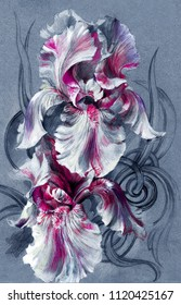 Beautiful exotic flowers of iris - watercolor, hand painting. Element for creating patterns, postcards, design, wallpapers, decor.