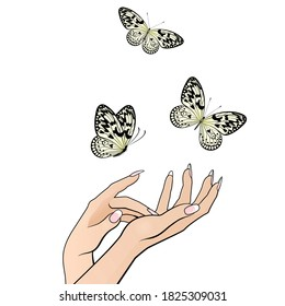 beautiful female hands release a flock of butterflies on a white background