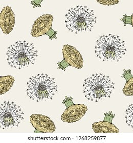 Beautiful floral seamless pattern with dandelion yellow flower heads and blowballs hand drawn in antique style. Botanical illustration for fabric print, wallpaper, wrapping paper, backdrop