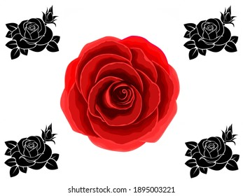 Beautiful flowers abstract pattern, background image