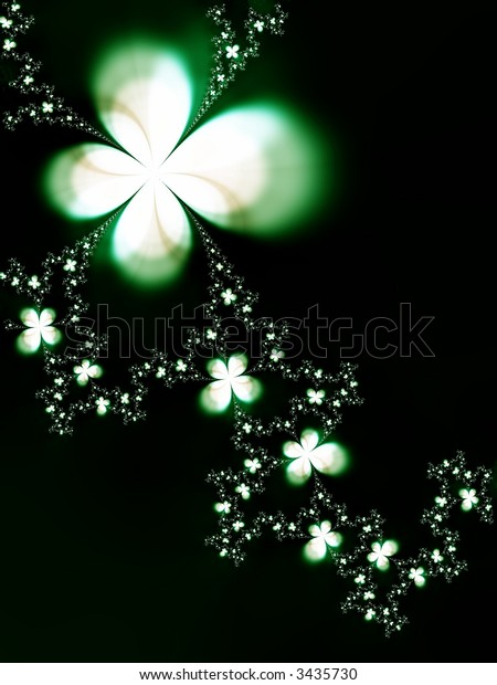 Beautiful flowers on a black background