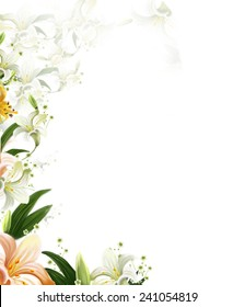 Beautiful Flowers white Lilies without Borders.Isolated on white