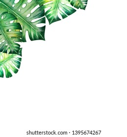 Beautiful frame of tropical leaves. Monstera, palm. Watercolor painting. Exotic plant. Natural print. Sketch drawing. Botanical composition. Greeting card. Painted background. Hand drawn illustration.