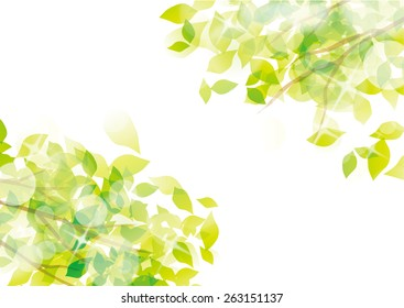 Beautiful fresh green of illustrations